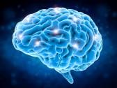 Кистозно-глиозные изменения головного мозга