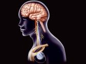 Что такое ДППГ - причины и лечение